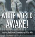 White World Awake